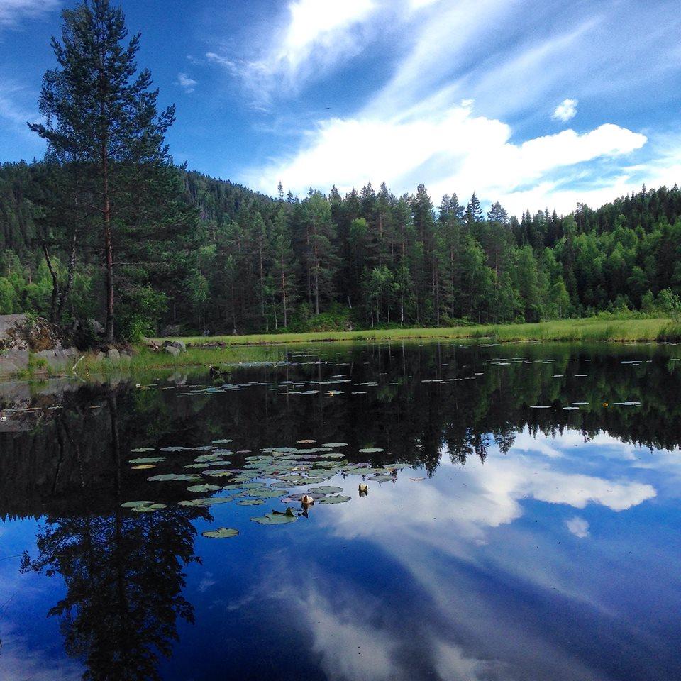 Skog er medisin, Kristin Daly, smilerynker, helse