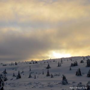 snø lys - kristin daly - smilerynker