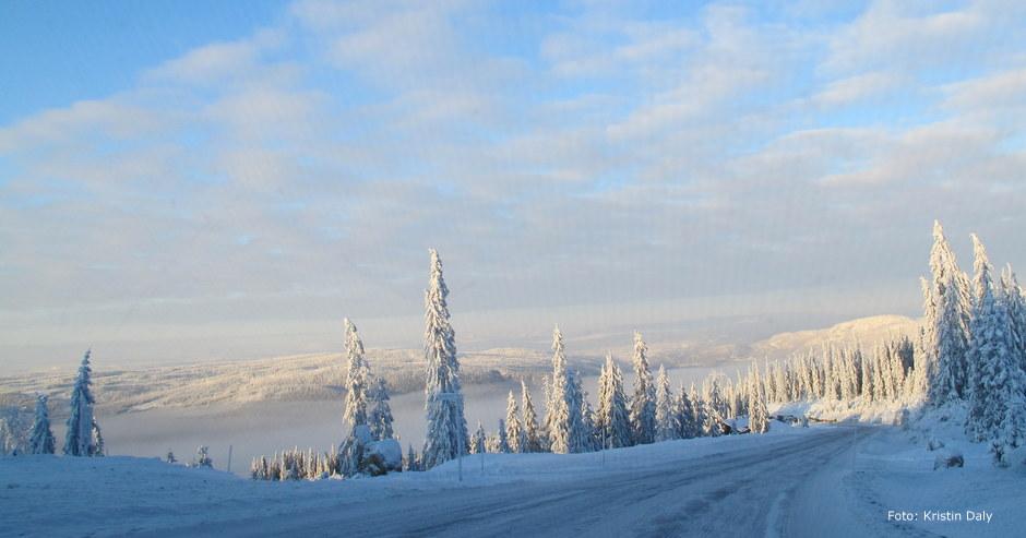 snø, vinter, kristin daly, smilerynker