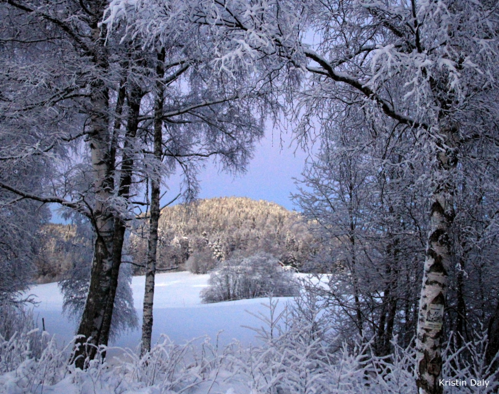 Losbydalen. Snø gjennom snø