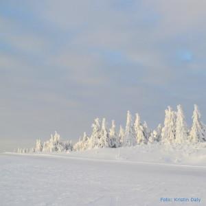 snø, kristin daly, smilerynker